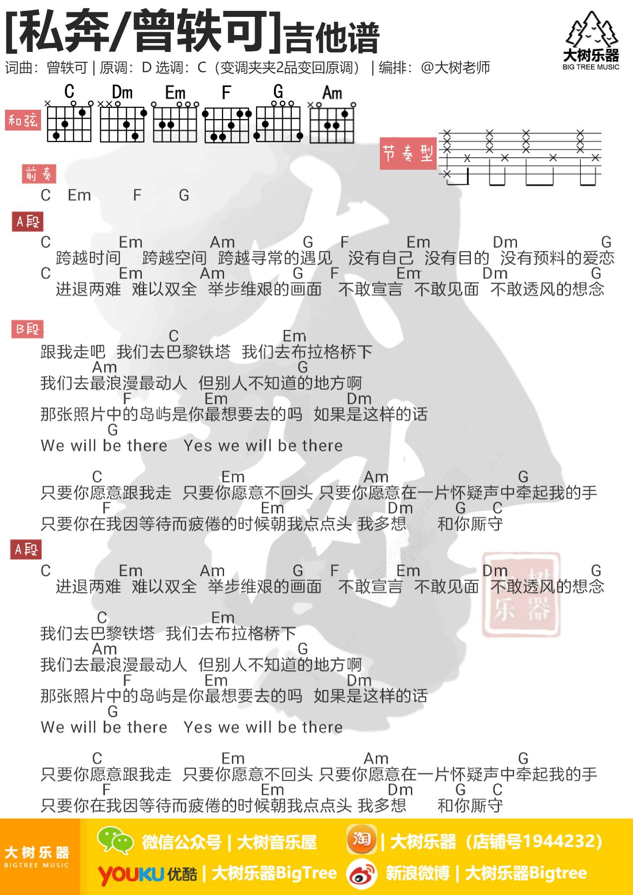 私奔(大树乐器-大树音乐)-吉他谱-C大调音乐网